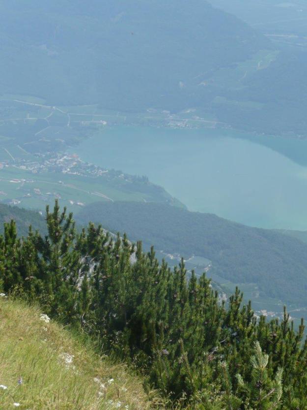 Monte Roen_03.07.12 027