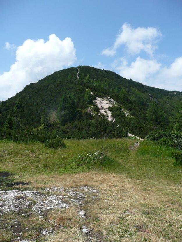 Monte Roen_03.07.12 030